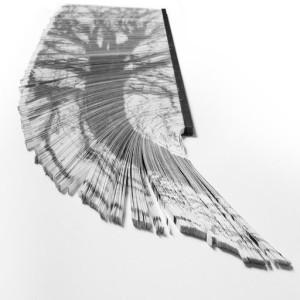 Oak (Fallen) - 2016 - 105 x 42 cm - stampa laser su circa 5400 strisce di carta bianca