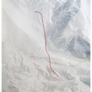 Feminine: inner landscape (2014, photography 30x40 cm)
